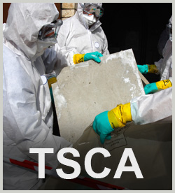Toxic Substances Control Act (TSCA)