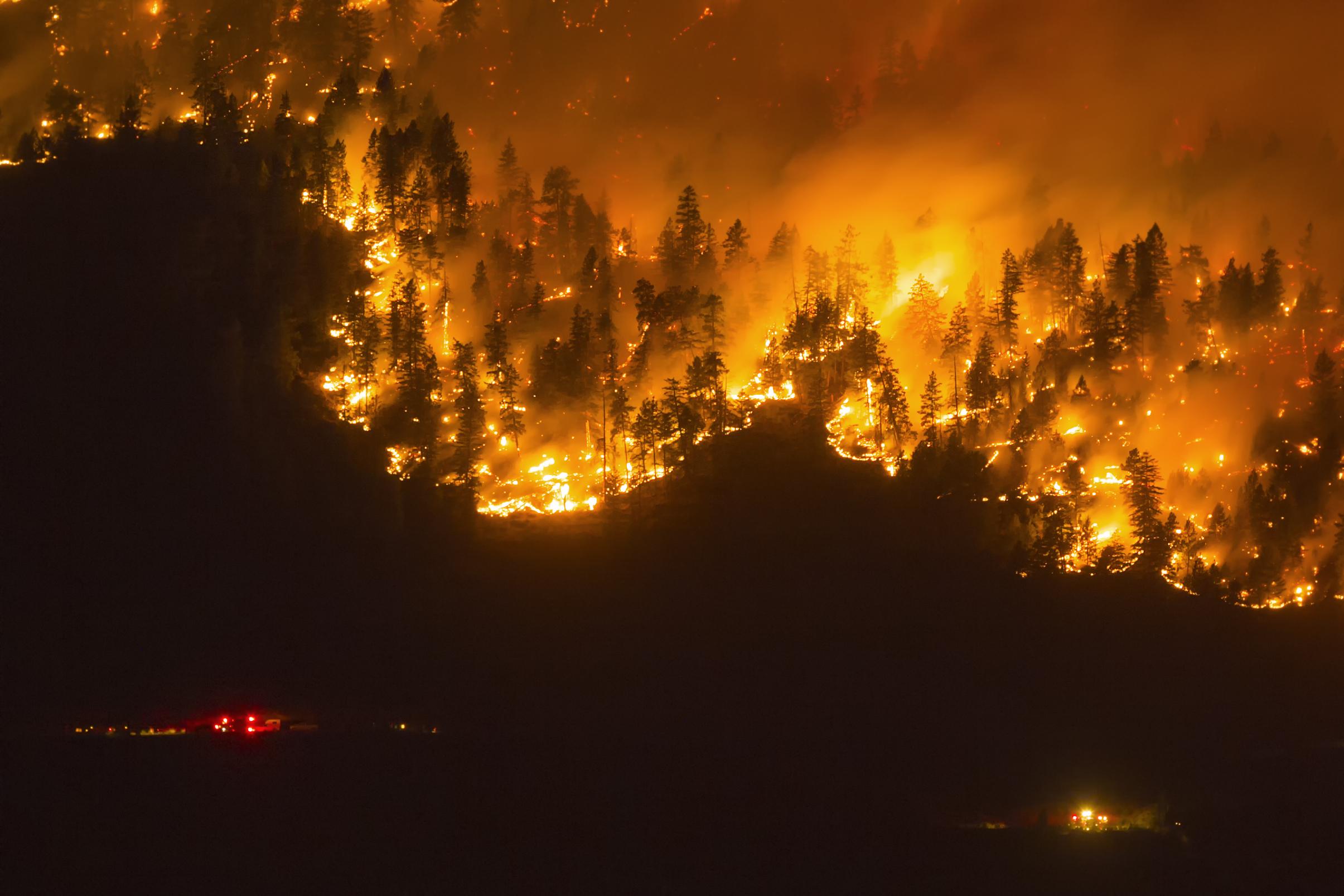 Compliance Brief: Wildfires